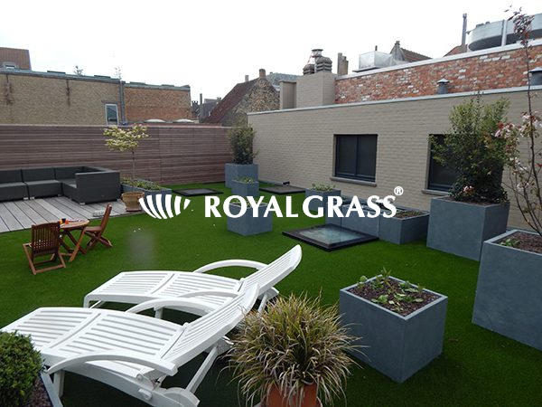 Project: Royal Grass Deluxe voor groendak te Veurne